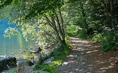 Fekete-erdő, Feldsee, Tengerszem