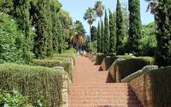 kertek és parkok lépcső fasor