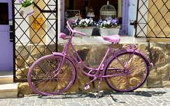 virágcsokor és dekoráció kerékpározás tavasz