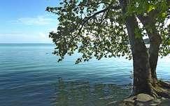 Balaton, tavasz, vízpart