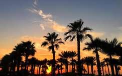 Dubaj, Atlantis The Palm