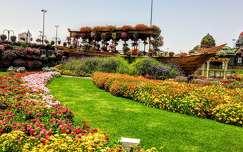 Dubai,Miracle Garden