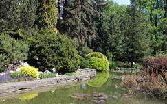 Krakkó - botanikus kert