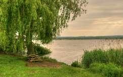 2016.05.15. Kis-Balaton,Kányavári sziget, Fotó: Szolnoki Tibor