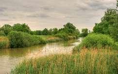 magyarország kis-balaton tó tavasz