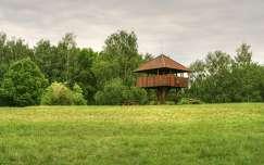 2016.05.15. Kis-Balaton,Kányavári-sziget, Fotó: Szolnoki Tibor