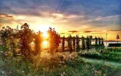 Balaton, napfelkelte, rózsák... (Keszthely)