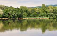 2016.06.11. Tata,Cseke-tó, Fotó: Szolnoki Tibor