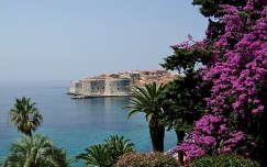 Dubrovnik,Horvátország
