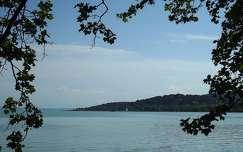 nyár Balaton víz Magyarország