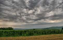 Fotó: Szolnoki Tibor