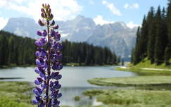 Olaszország, Misurina tó, Dolomitok