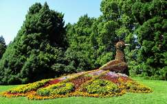 páva szobor kertek és parkok virágcsokor és dekoráció