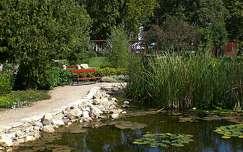 Siófok, nyár, kert