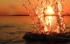 balaton v�zcsepp ny�r t� naplemente magyarorsz�g
