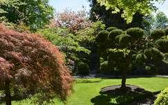 fa írország kertek és parkok
