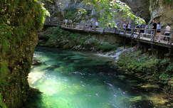út alpok vintgar szurdok szurdok szlovénia nyár