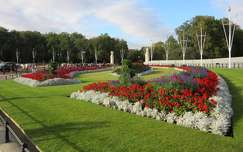 Anglia, London - Buckingham palota parkja