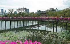 Park, Puszan, Dél-Korea