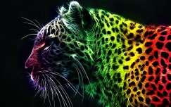 Leopárd montázs