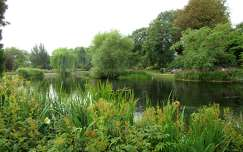 Anglia, London - Regent's Park
