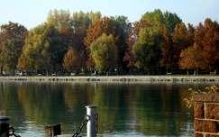 ősz, sétány, Balatonalmádi, Magyarország