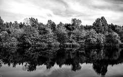 Tó, tükröződés, évszak, ősz