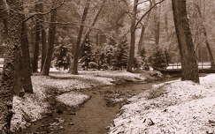 tél kertek és parkok patak
