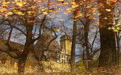 Városliget - őszi pocsolya :)