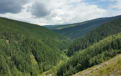 Transalpina Romániában