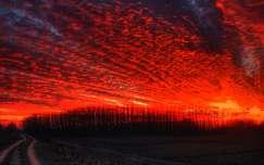 Pirosan izzó felhők, Dávod, Magyarország