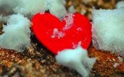 Fagyos szerelem...