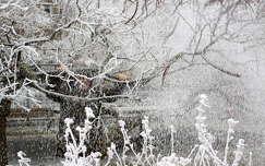 tél havazás zúzmara