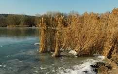 Balatonalmádi, tél, jég, nádas, Magyarország