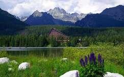 csorba-tó nyár vadvirág szlovákia tó tátra hegy ház kárpátok