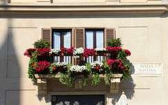 Olaszország, Róma - Piazza Navona