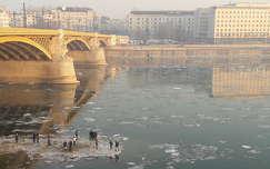 Budapest, Margit híd, 2017 január