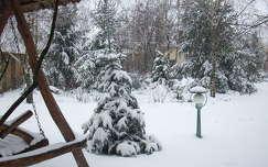 tél fenyő lámpa kertek és parkok