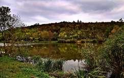 ősz tükröződés