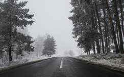 Ködös téli út