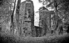 Pálos kolostorrom (Salföld)