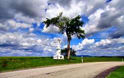 felhő út szobor fa