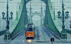 A Szabadság híd,egy ködös reggelen.