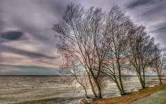 Ég, jég, Balaton...
