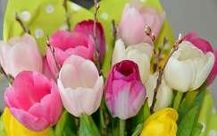 tavaszi virág barka tavasz virágcsokor és dekoráció tulipán