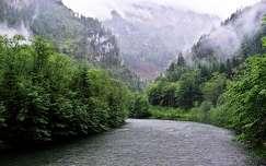 tavasz hegy folyó