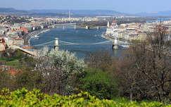 duna lánchíd magyarország híd budapest folyó