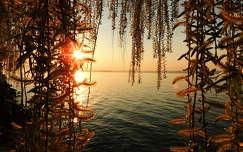 magyarország balaton tó naplemente tavasz