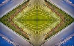 Balatoni szimmetria...