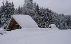 Téli Alpok